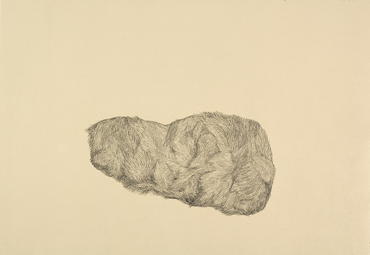 Pellet #2 hardground etching and drypoint, 2007